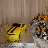 Bumblebee Transformer(30 serves) $200