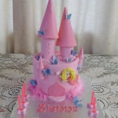 Butterflies Fairy Castle (30 serves) $200